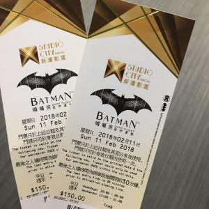 蝙蝠侠夜神飞驰旅游景点攻略图