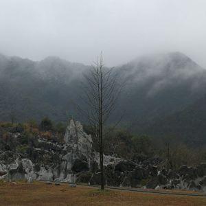 石林景区旅游景点攻略图