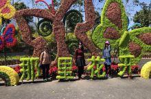 博罗那里花开主题公园