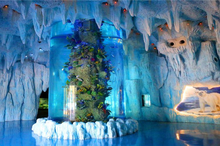 Qinhu Lake Ocean World3