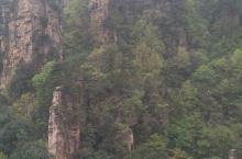 张家界旅游,分天门山景区,武陵源景区,大峡谷景区。地图显示,武陵源距天门山3个半小时,距大峡谷48分