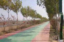 河南的首个全民健身示范镇