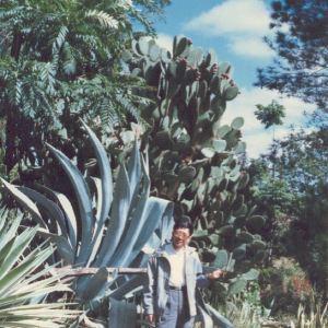 Kalimba Reptile Park旅游景点攻略图