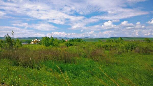 在呼伦贝尔的初夏,寻一曲绿色的草原牧歌(呼伦贝尔北线6天5晚包车自由行)