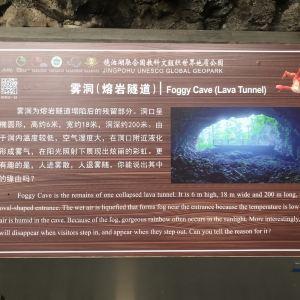 火山口地下森林旅游景点攻略图