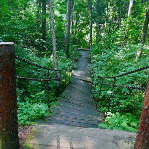 兴安森林公园旅游景点攻略图
