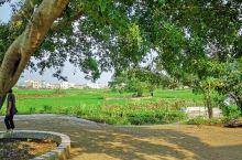农村生态环境