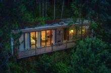 6折限量抢购,这片媲美京都的红叶之森只藏15栋梦幻树屋,杭州1.5h直达!