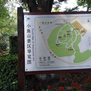 小鱼山公园旅游景点攻略图