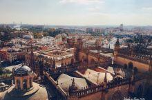 #网红打卡地#塞维利亚大教堂