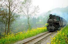 媲美千与千寻的小火车原来在四川!