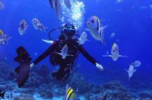 #元旦去哪儿玩#冬季到台湾旅行,绿岛潜水