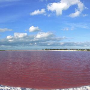 粉红湖旅游景点攻略图