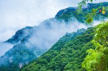 天堂寨:华东最后一片原始森林