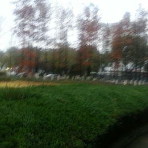 池袋西口公园旅游景点攻略图