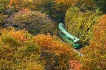 坐上慢摇小火车,泡最惊艳的温泉