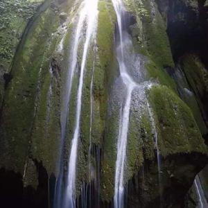 油杉河景区旅游景点攻略图