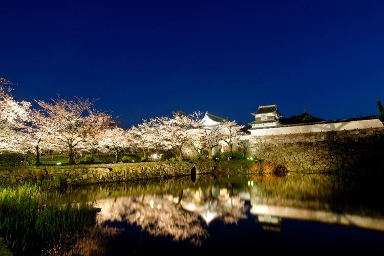 Fukuoka Castle1