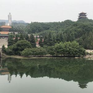中原大佛景区旅游景点攻略图