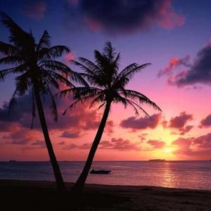 哈勃岛游记图文-粉色的情怀,粉色的梦;粉色的旅途,粉色的你
