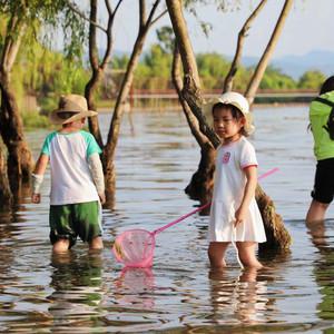 抚仙湖游记图文-八月未央去远方,抚仙湖畔的惬意两日