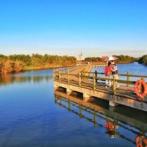 东营游记图文-东营,黄河入海处,感受母亲河的壮美