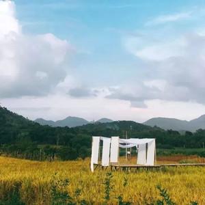 增城区游记图文-稻田野餐、崖边泳池、玻璃房子...广州周边人气民宿TOP6