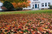 莫霍克小径--秋天里的童话