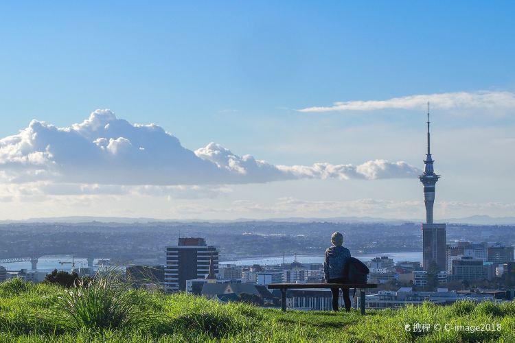 Auckland Domain1