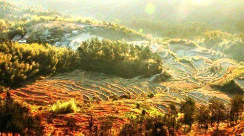 Mount Jiulong (Nine Dragons Mountain) National Forest Park