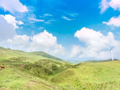 Wumeng Grassland