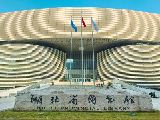 Hubei Library New Hall