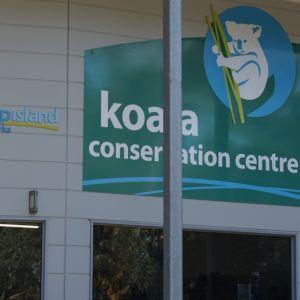 考拉保育中心旅游景点攻略图
