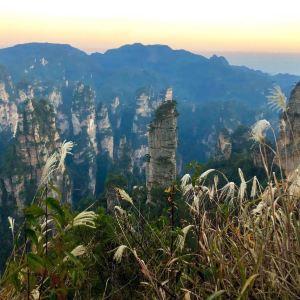 张家界国家森林公园旅游景点攻略图