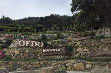 美麗的外島植物公園