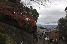 京都红叶行3