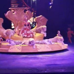 长隆国际马戏大剧院旅游景点攻略图