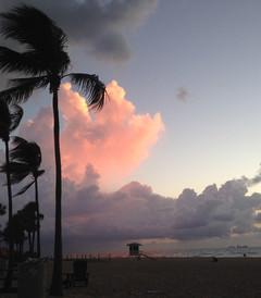 [佛罗里达游记图片] 阳光沙滩海浪棕榈树,还有一位老作家-畅游佛罗里达
