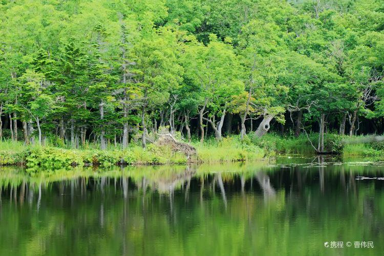 Shiretoko Goko Lakes1