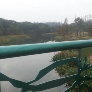 长兴岛经济区游记图文-#YOUNG#长兴岛郊野公园秋游