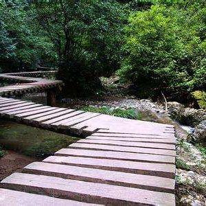 百丈桥旅游景点攻略图