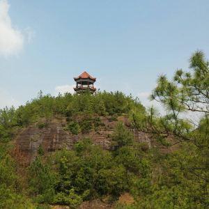 罗田岩森林公园旅游景点攻略图