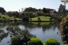 公园不大,颇有江南园林的味道。