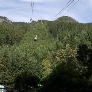 松鸡山旅游景点攻略图