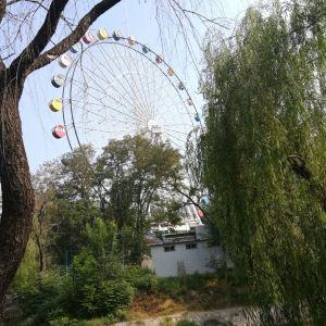 新乡市人民公园旅游景点攻略图