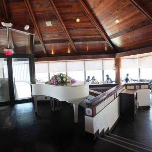 Dolphin restaurant旅游景点攻略图