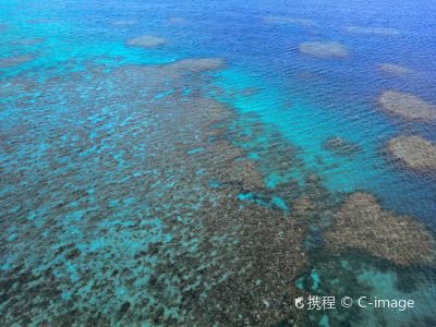 Moore Outer Reef