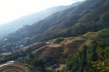桂林龙脊梯田十月美景
