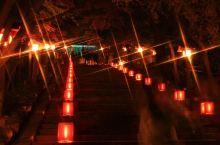 """冬日的京都,有一片""""花""""与""""灯""""在等你"""