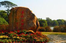 记华南植物园半日游